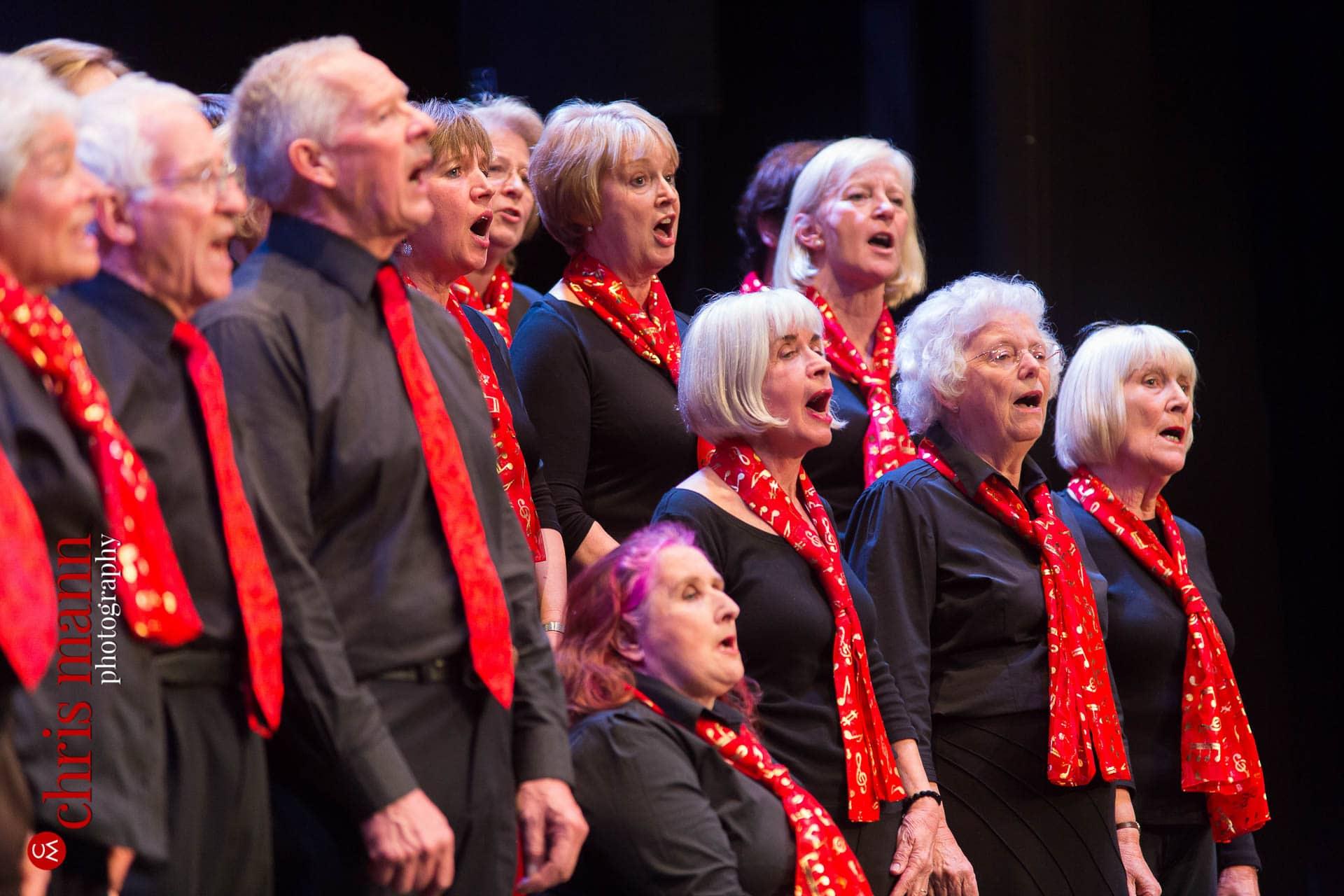 Choiroke-2016-concert-Dorking-Halls-058