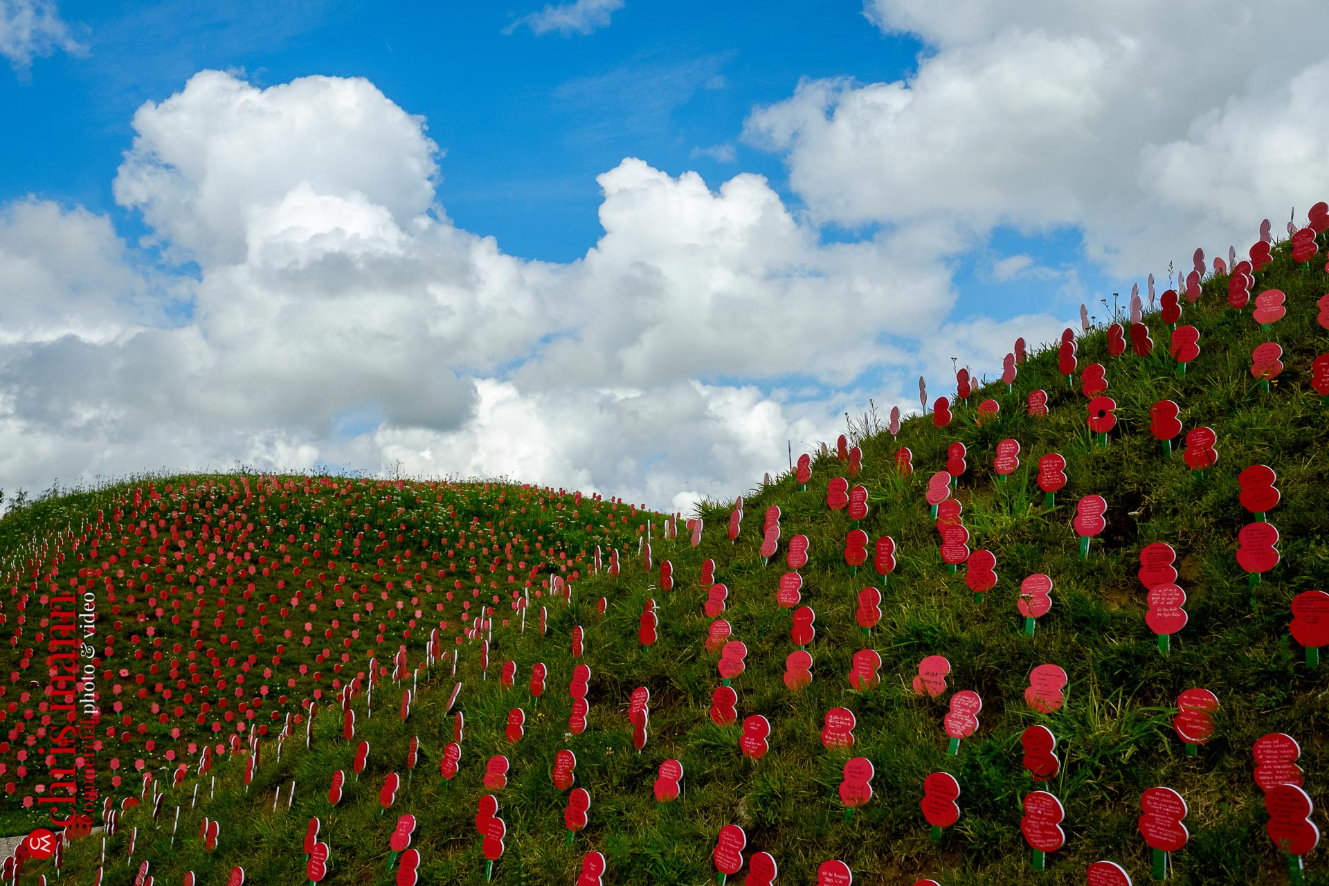 afield of remembrance poppies at Thiepval Battle of the Somme 100th Anniversary