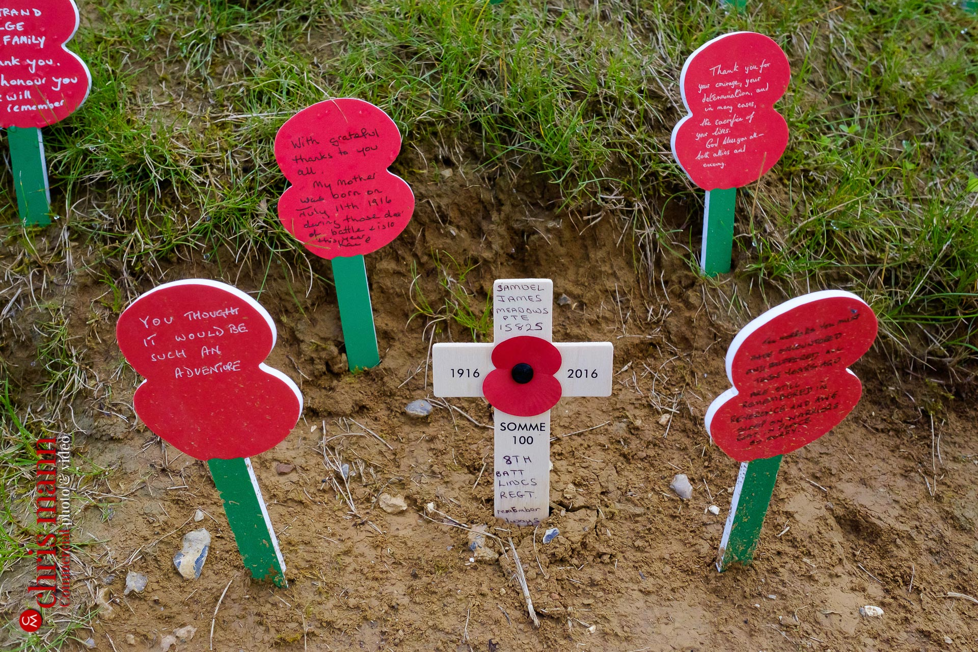 remembrance poppies at Thiepval Battle of the Somme 100th Anniversary