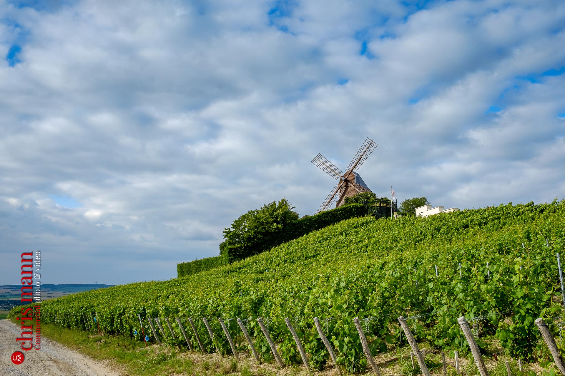 G H Mumm windmill in Champagne vineyards near Reims Picardy France