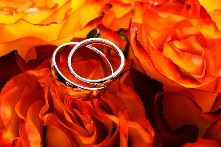 wedding rings on roses close-up product promotional images